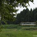 写真: 旧のと鉄道車両が眠る場所