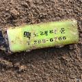 写真: 韓国のライター