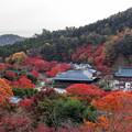 Photos: 勝尾寺 境内