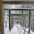 Photos: 神秘の参道