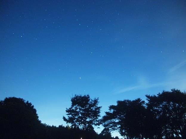 写真: 見上げてごらん夜の星を、、、