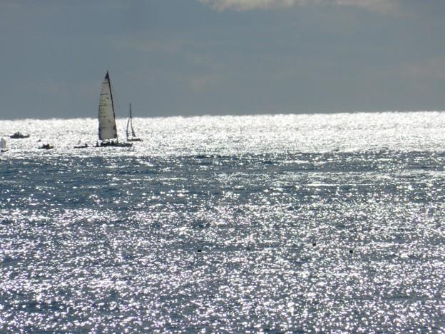 陽光燦きの海に