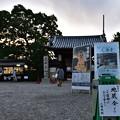 Photos: 地蔵会寸景(1)