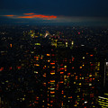 写真: 東京砂漠