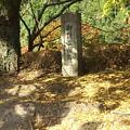 御野立所跡の碑 黎明館