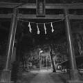 写真: 真夜中の神社