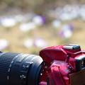 Photos: 私のカメラ