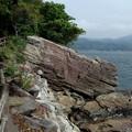 淡島の柱状節理