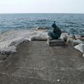 淡島西側の海