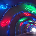 淡島遊歩トンネル