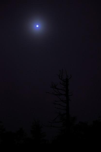 Photos: 幽玄の月
