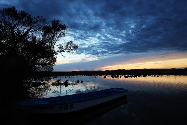 小舟のある朝景