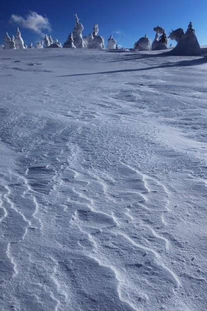 Photos: 風雪がつくる光景