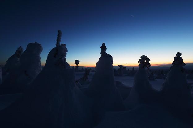樹氷原に輝く