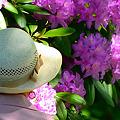Photos: 白い帽子