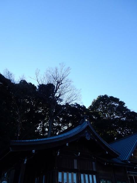 写真: DSCN1262 初詣