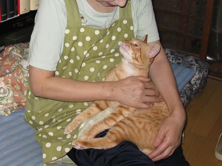 2008年9月21日のボクチン(4歳)