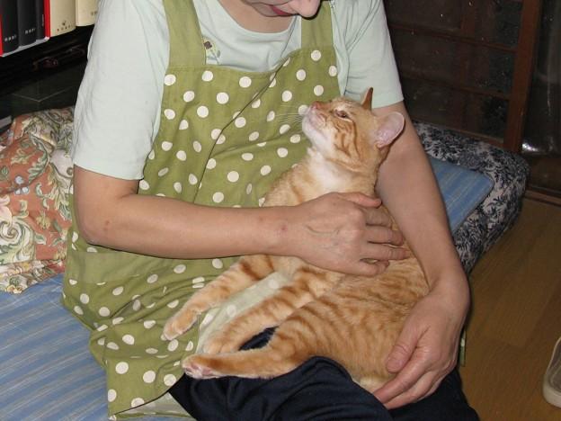 Photos: 2008年9月21日のボクチン(4歳)