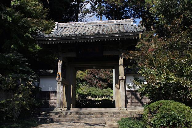 写真: 龍潭寺山門入り口
