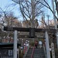 写真: 南部神社参道