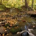 写真: 秋色に流れて