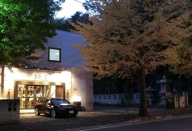 写真: Autumn cafe