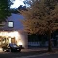 Autumn cafe