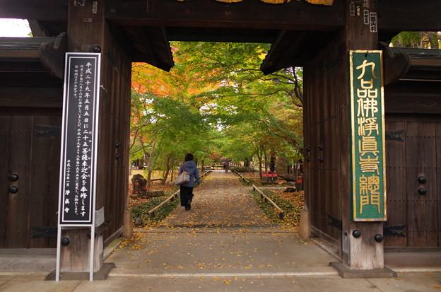 九品仏浄真寺(2016.11)