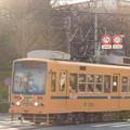 2016年『建国記念の日』の朝を走る青帯7022号車