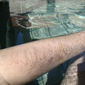 Photos: 腕に付いた泡