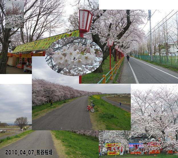 2010_04_07_熊谷桜堤