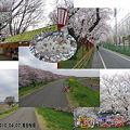 Photos: 2010_04_07_熊谷桜堤