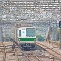 Photos: 電線ジャングル