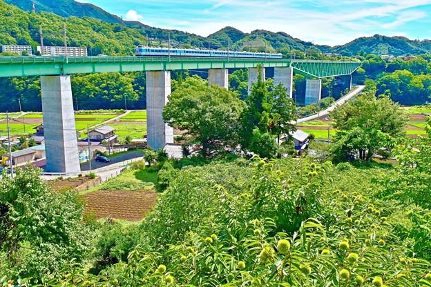 天空への架け橋(1)