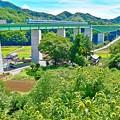 写真: 天空への架け橋(1)