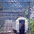 Photos: 特急N'EX41号