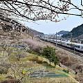 写真: 春色沿線3