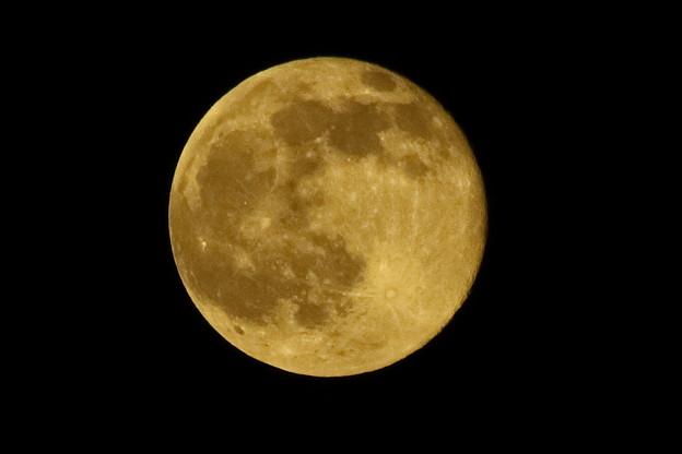 満ちる月!