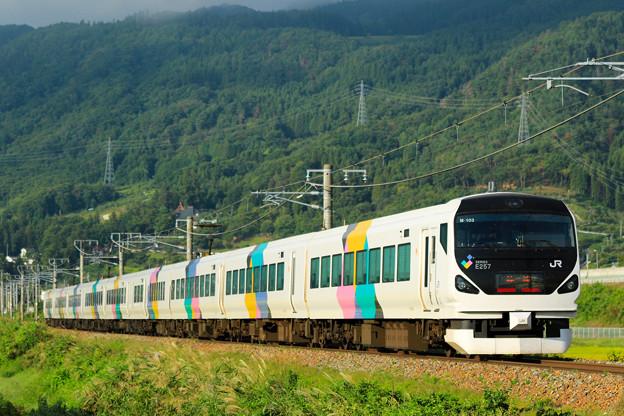 Photos: E257系@稲荷山ストレート