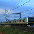 Photos: E231@ヒガハス