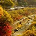 Photos: 紅葉シーズンの諏訪峡を行く211系