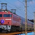 Photos: 8010レ EF81-81牽引カシオペア紀行@蒲須坂鉄橋
