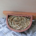 写真: swallow bowl