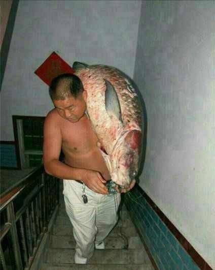 豪快な魚獲り&でかすぎる魚さん達(笑) (11)