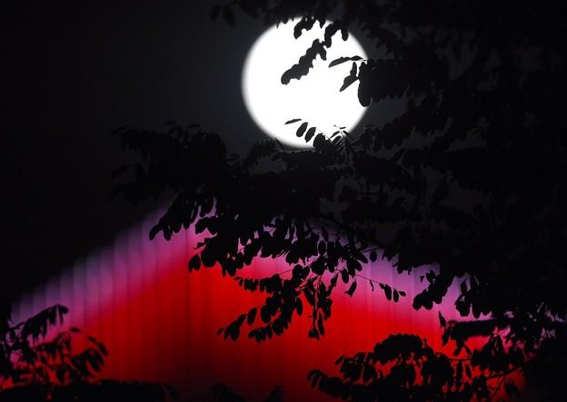 ?宁沈阳拍?的中秋明月