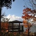 【山中湖付近の紅葉】1