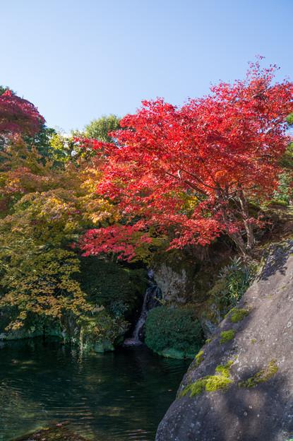 箱根美術館_滝がありました。