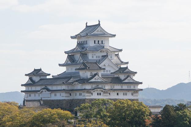 姫路城十景【No6_男山配水池公園】4