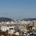 Photos: 姫路城十景【No9_手柄山(緑の相談広場)】4