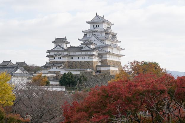 姫路城【47_西の丸から見る天守と紅葉】